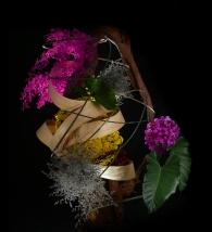Rangkaian Bunga Eden (29)
