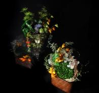 Rangkaian Bunga Eden (5)