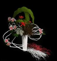 Rangkaian Bunga Eden (9)